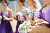 Row of bridesmaids — Stock Photo