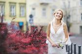 Beautiful Bride — Foto Stock