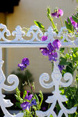 Sweet pea at a white fence — Stock Photo