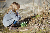 Little toddler girl touching flowers — Stok fotoğraf