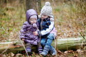 Two sisters sitting on a tree — Stock Photo