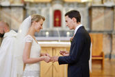 Bride and groom holding wedding rings — Стоковое фото