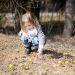 Little toddler girl touching spring flowers — Stock Photo