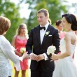 Wedding guests toasting bride and groom — Stock Photo #43451131