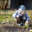 Little toddler girl touching snowdrops — Stock Photo