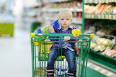 Adorable girl sitting in shopping cart — Stock Photo