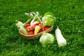 Fresh organic vegetables in a basket — Stock Photo