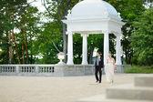 美しい花嫁と花婿 — ストック写真