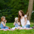 Mother and her daughters picnicking in the park — Stock Photo #43460849