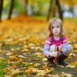 Adorable little girl playing with autumn leaves — Stock Photo #43460961