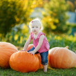 Adorable toddler girl climbing big pumpkin — Stock Photo #43461849