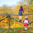 Two little sisters having fun in autumn park — Stock Photo #43463355