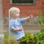 Adorable girl picking raspberries in a garden — Stock Photo #43465997