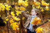 Adorable girl having fun on autumn day — 图库照片