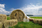 Rolls of hay as a wedding decoration — Stock Photo