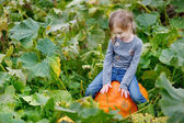 Cute little girl sitting on a pumpkin — Stockfoto