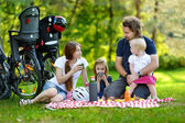 Family of four picnicking in the park — Stock Photo