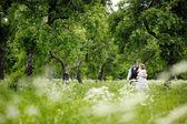 Noivo e noiva linda — Foto Stock