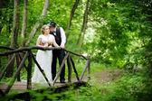 Le marié et la mariée belle — Photo