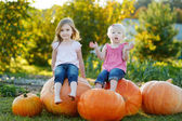 Two little sisters sitting on a huge pumpkins — ストック写真