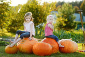 Two little sisters sitting on a huge pumpkins — Stock Photo