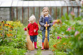 Two sisters holding brooms at autumn — Stock Photo