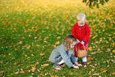 Little girls gathering acorns on autumn day — Stock fotografie