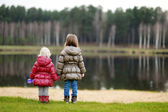 Two sisters enjoying the view on late autumn — Stock Photo