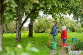 Two little girls picking apples in a garden — Stock Photo