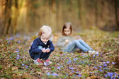 Małe siostry zbierając kwiaty wiosny — Zdjęcie stockowe