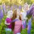 Sisters and mother in lupine field — Stock Photo #49275839