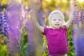Girl in lupine field — Stock Photo