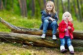 Sestry na protokoly — Stock fotografie