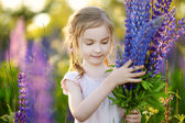 Girl in lupine field — Stock Photo