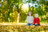 Sisters     in   autumn park — Stock Photo