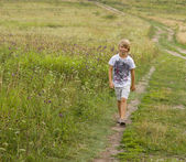 Little boy walking on summer field. — Stock fotografie
