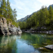 Altai river Kumir - Stock Photo