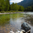 Altai river Kumir — Stock Photo #12453449