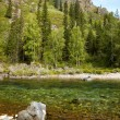 Altai river Kumir — Stock Photo #12453493