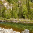 Altai river Kumir — Stock Photo #12453533