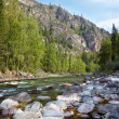 Altai river Kumir — Stock Photo #12453563