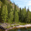 Stock Photo: Altai river Kumir