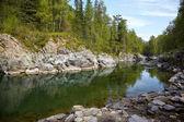 Altai river Kumir — Stock Photo