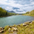 Royalty-Free Stock Photo: Altai river Katun