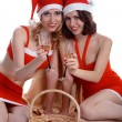 Celebrating Christmas — Stock Photo #1293741