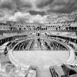 The Colosseum — Stock Photo #13879156