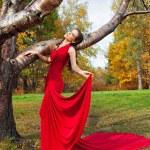 Kırmızı elbiseli güzel esmer — Stok fotoğraf