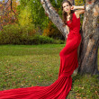 A beautiful brunette in red dress — Stock Photo #16890441
