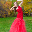 A beautiful brunette in red dress — Stock Photo #16890529