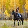 Horsewoman - Stock Photo
